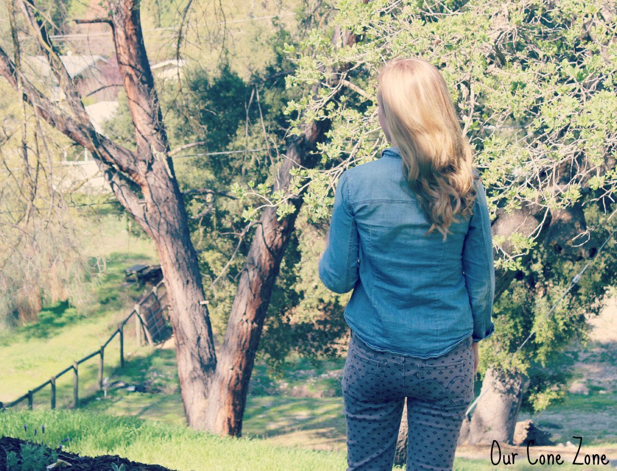 What I Wore Wednesday Chambray and Printed Skinnies back view