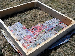 newspaper to prevent weeds