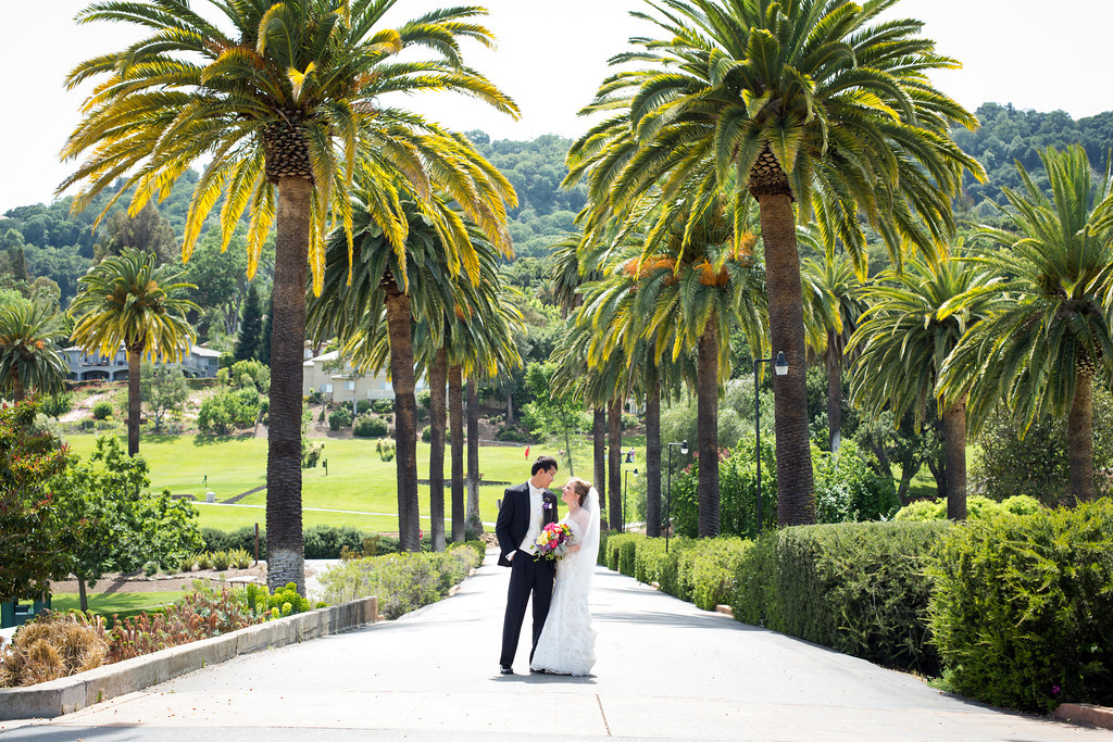 wedding picture palm trees