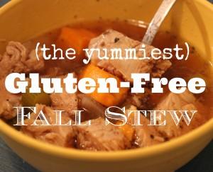 Gluten Free fall stew