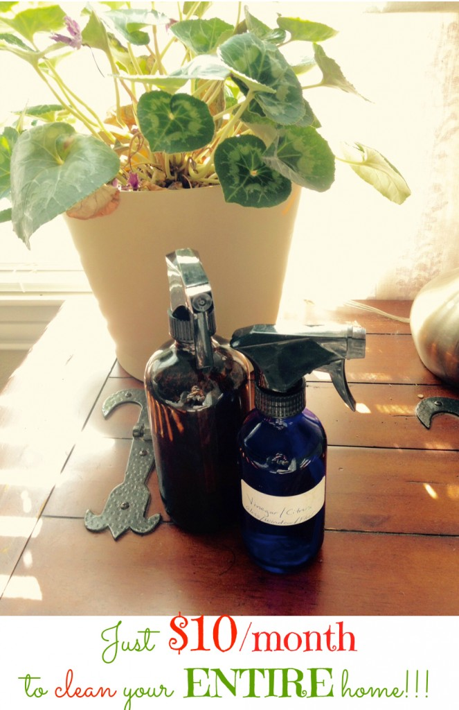 Essential Oils Cleaning Blog