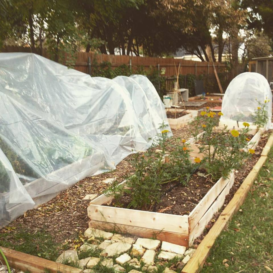 garden beds winterized